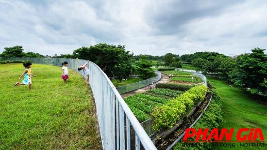 thiet ke truong mam non farming kindergarten 14