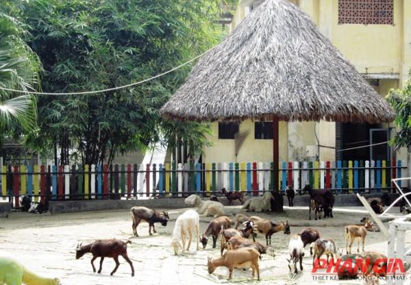 Động vật trong Thảo Cầm Viên